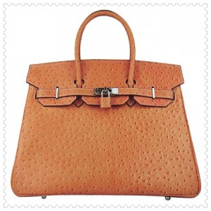 hermes-birkin-bag-35-premium-ostrich-leather-orange-silver
